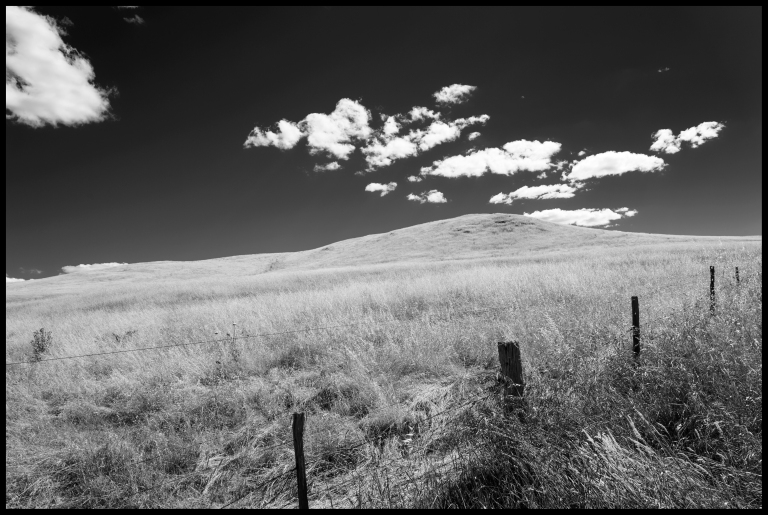 hill & fence a