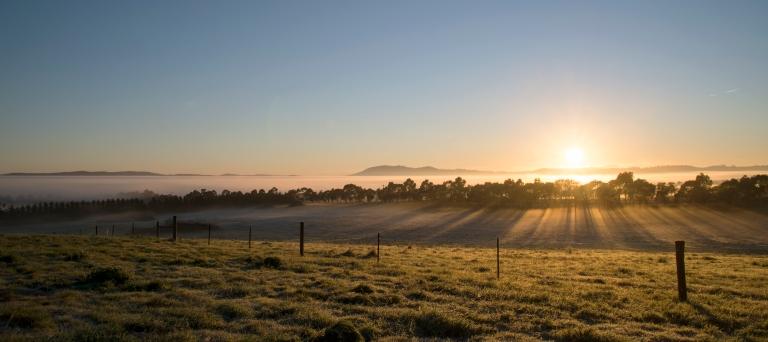 sun rise bore paddock
