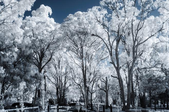 blue sky experiment