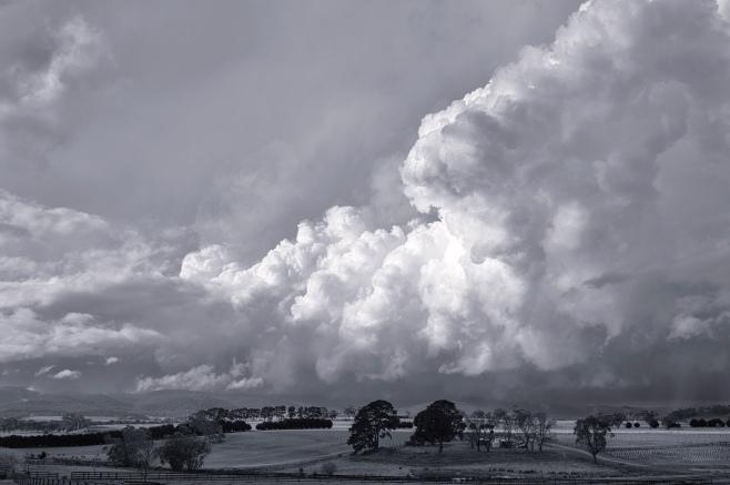 newham storm